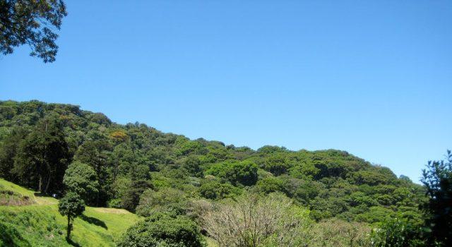 Tomada de Panoramio.com