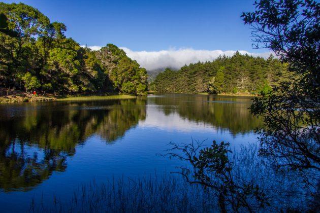 Gu a de lagos y lagunas de costa rica conozca su cant n Lagunas para cachamas