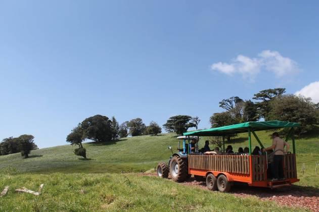 Freddo Aventura Rural