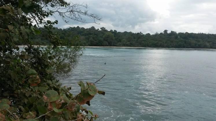 Punta Uva, Limón